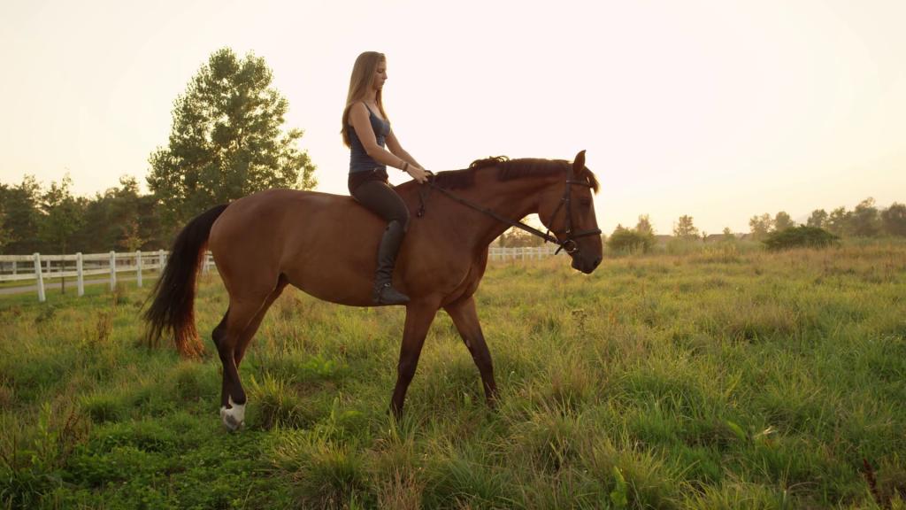 Horseback Riding in Armenia
