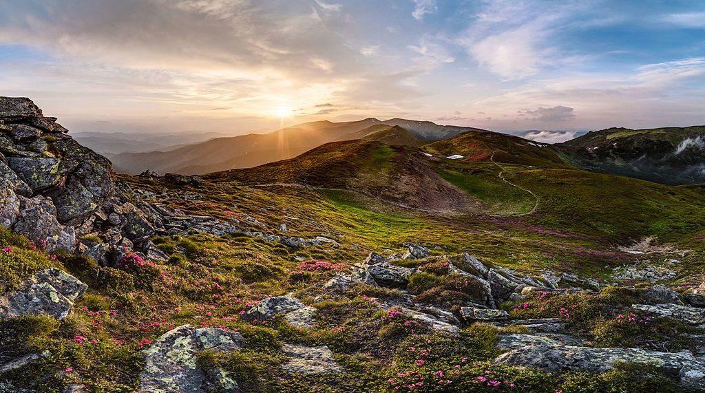 Carpathian Landscapes