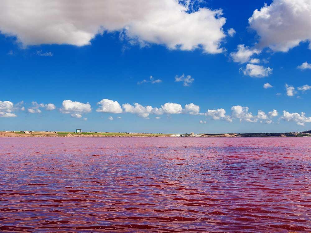 Pink Lake Baku