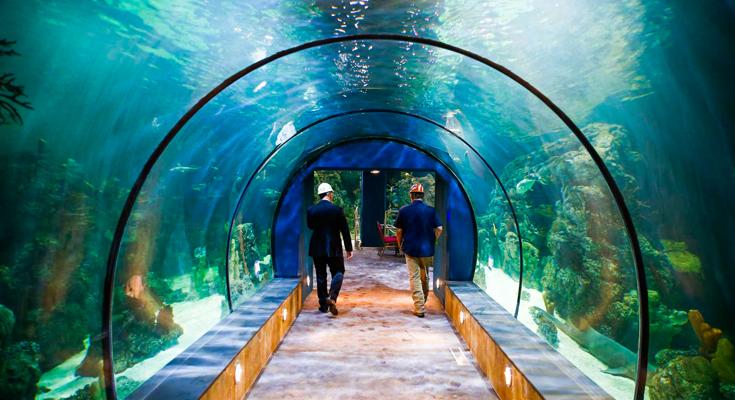 Aqua Vega Aquarium Turkey