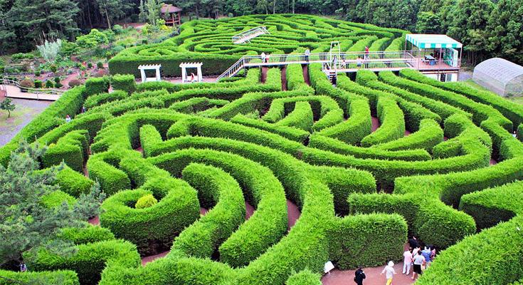 Gimnyeong Maze Park
