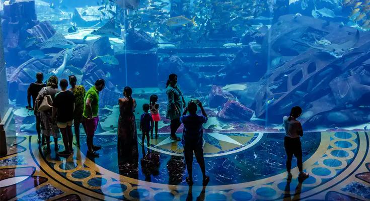 The Lost Chambers Aquarium and Ambassador Lagoon
